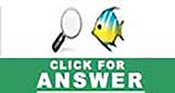 Guess the Emoji Level 12 Answers and Cheats - Guess the ...