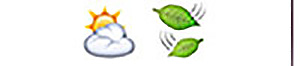 Guess the Emoji answers and cheats level 39-9