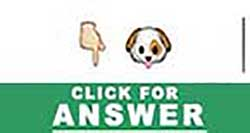Guess the Emoji answers and cheats level 40